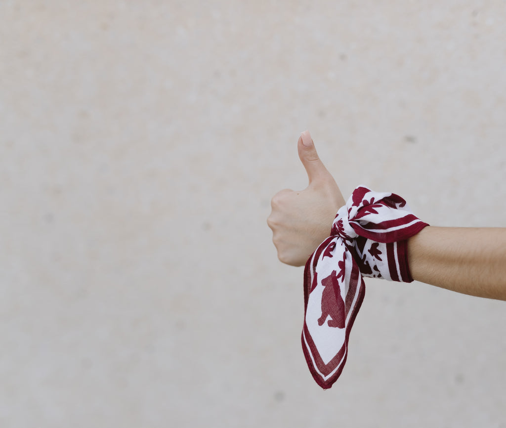 Texas A&M Aggies Small Scarf