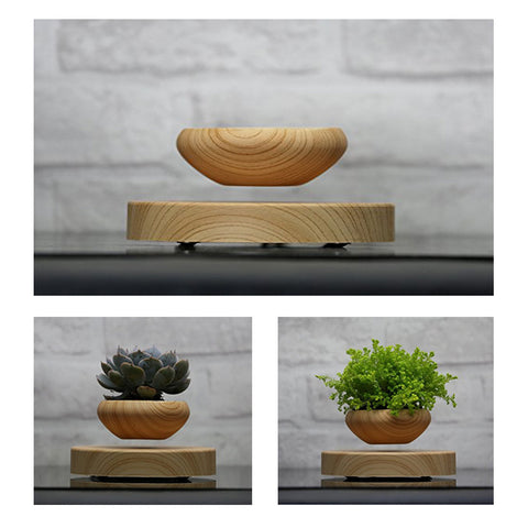SkyPlanter Floating Bonsai Pot