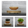 Image of SkyPlanter Floating Bonsai Pot