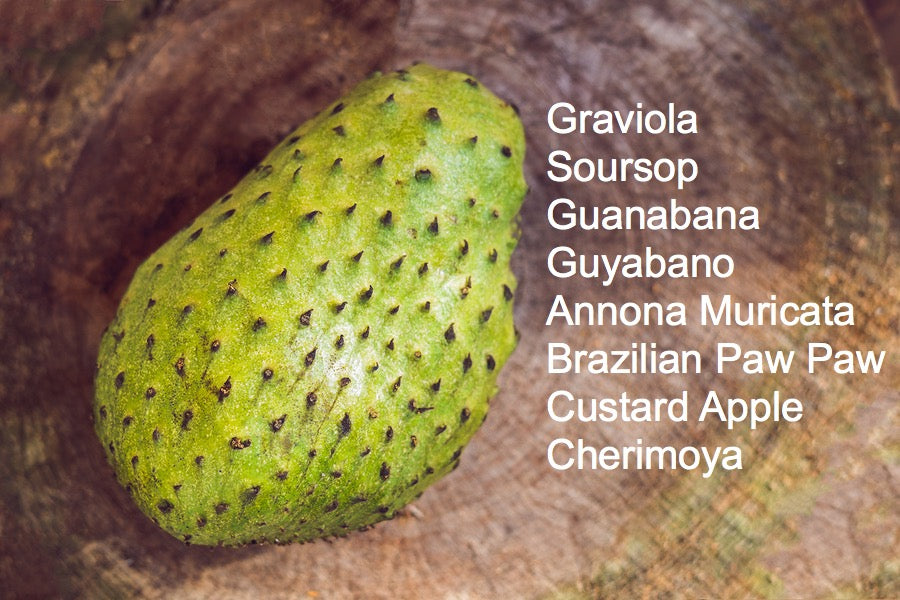 Is soursop and graviola the same thing?