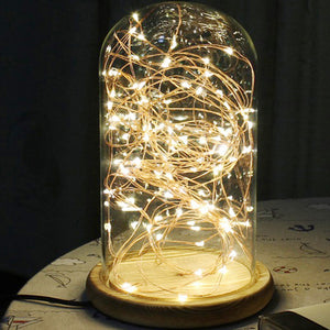 Enchanted Fairy Light Decoration (5m)