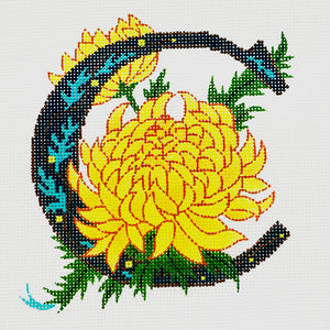 C-Chrysanthemum