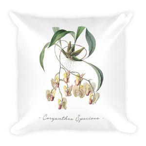 Vintage Orchid Illustration Square Throw Pillow with Stuffing (Coryanthes Speciosa)