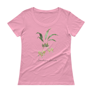 Vintage Orchid Illustration Women's T-Shirt (Stanhopea Saccata)