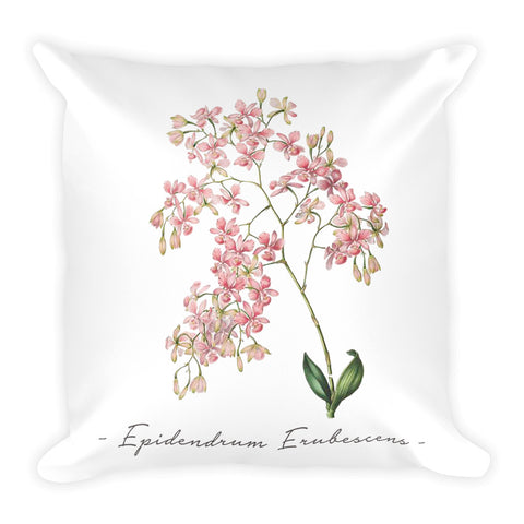 Vintage Orchid Illustration Square Throw Pillow with Stuffing (Epidendrum Erubescens)