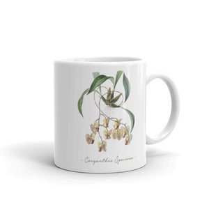 Vintage Orchid Illustration Mug (Coryanthes Speciosa)