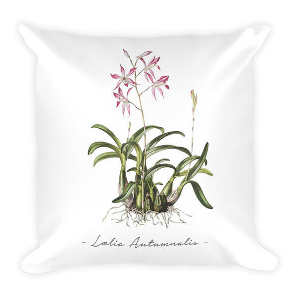 Vintage Orchid Illustration Square Throw Pillow with Stuffing (Laelia Autumnalis)