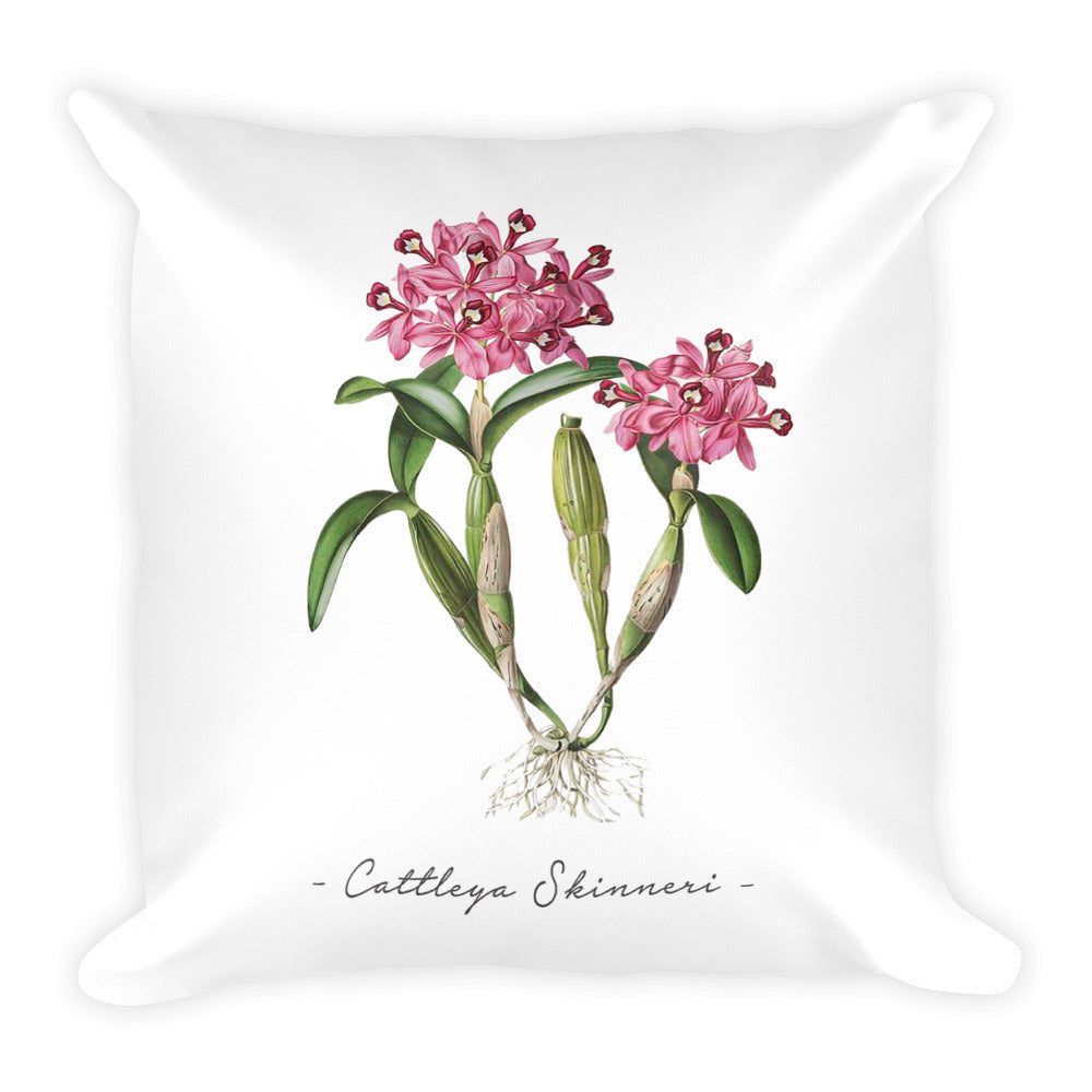 Vintage Orchid Illustration Square Throw Pillow with Stuffing (Cattleya Skinneri)