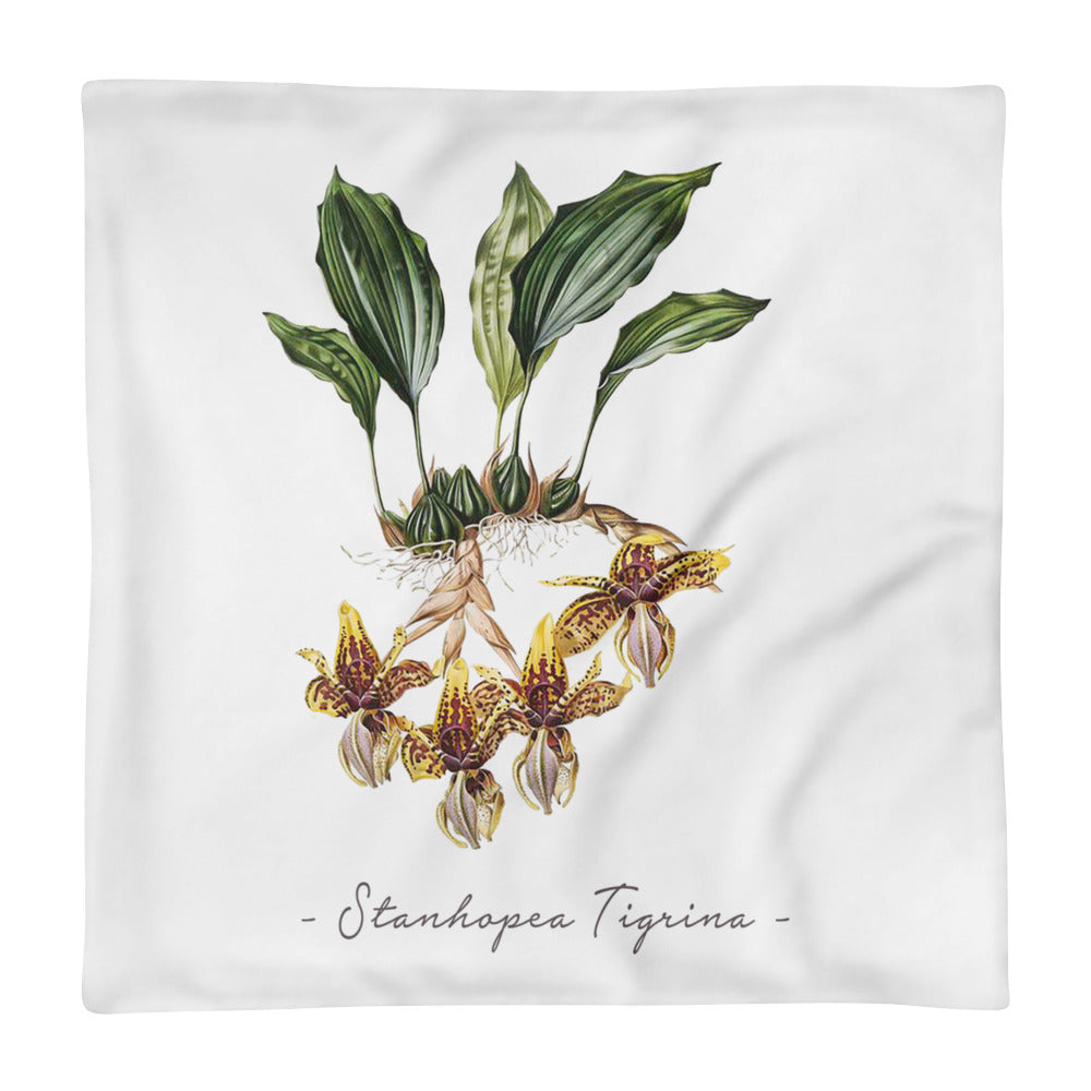 Vintage Orchid Illustration Square Pillow Case ONLY (Stanhopea Tigrina)