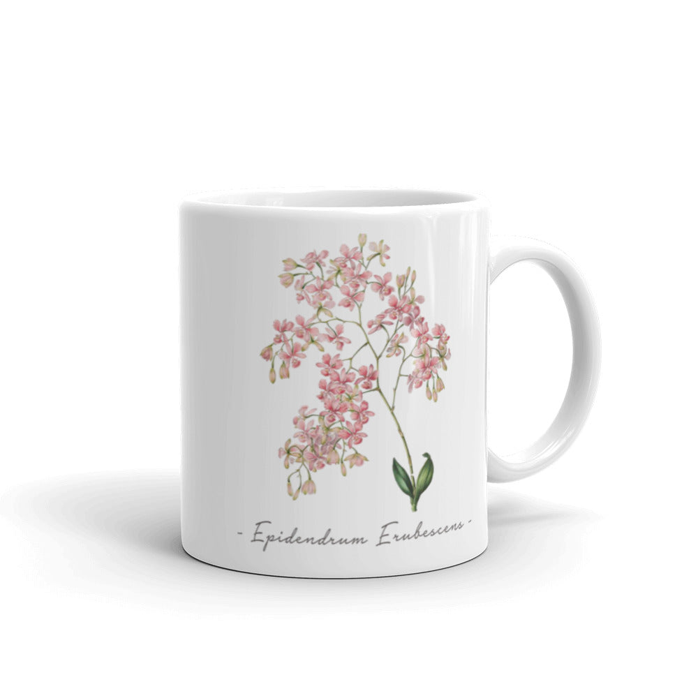 Vintage Orchid Illustration Mug (Epidendrum Erubescens)