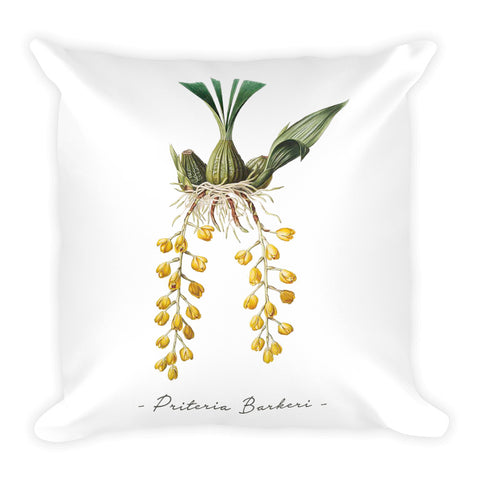 Vintage Orchid Illustration Square Throw Pillow with Stuffing (Priteria Berkeri)