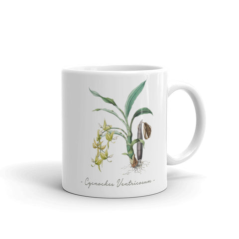 Vintage Orchid Illustration Mug (Cycnoches Ventricosum)