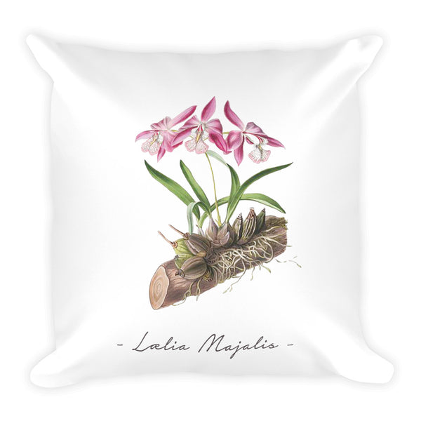 Vintage Orchid Illustration Square Throw Pillow with Stuffing (Laelia Majalis)