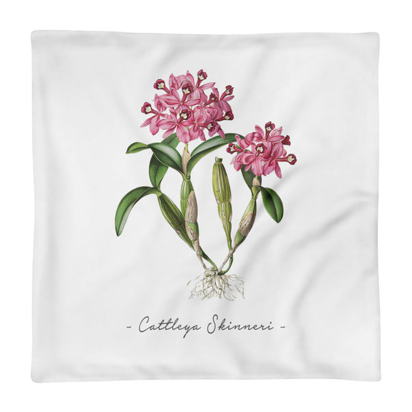 Vintage Orchid Illustration Square Throw Pillow Case ONLY (Cattleya Skinneri)