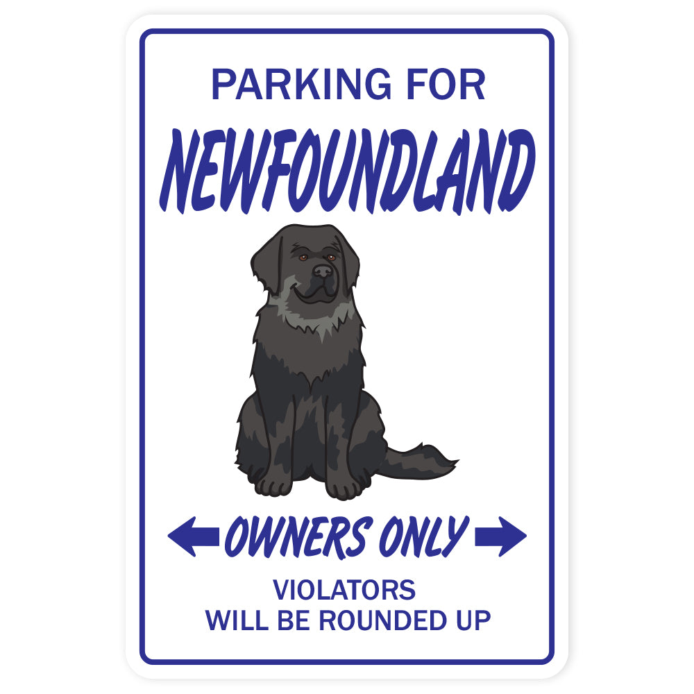 Newfoundland Street Vinyl Decal Sticker