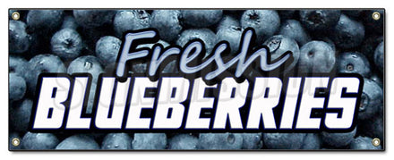 Fresh Blue Berries Banner
