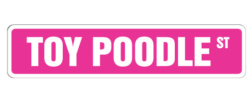 Toy Poodle Street Vinyl Decal Sticker