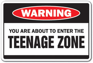 You Are About To Enter The Teenage Zone Vinyl Decal Sticker