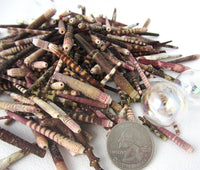 sea urchin spine, sea urchin spike, urchin spine shells, urchin spike shells, tiny sea urchin spines, wind chime shells
