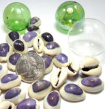 "Purple Cowrie Seashells, Purple Wedding Shells, Small Dark Purple Craft Shells, .5-1"", 36 PC"