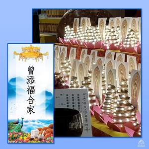 YS - Avert Calamities for Longevity Medicine Buddha Light Tower (21 Days Lights)