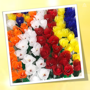 VD - Rainbow Tulips, Vesak Joy
