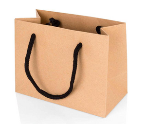 5 x Landscape Kraft Paper Gift Bag With Rope Handles