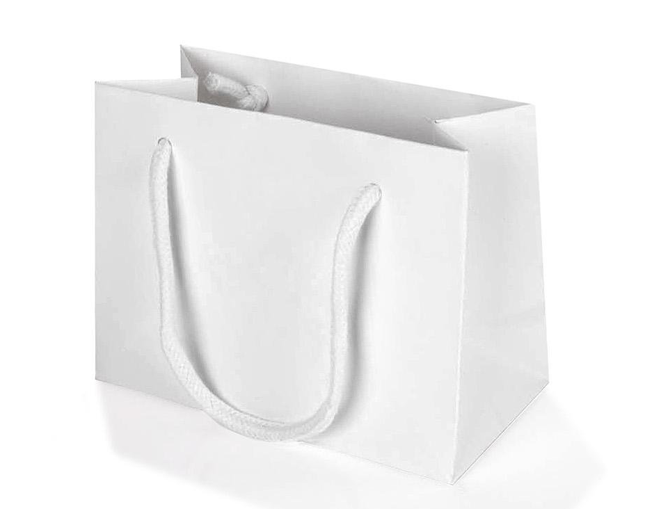5 x White Landscape Paper Gift Bag With Rope Handles