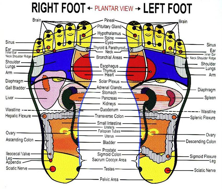 Foot Inserts Acupressure Points Cigala Cycling Retail