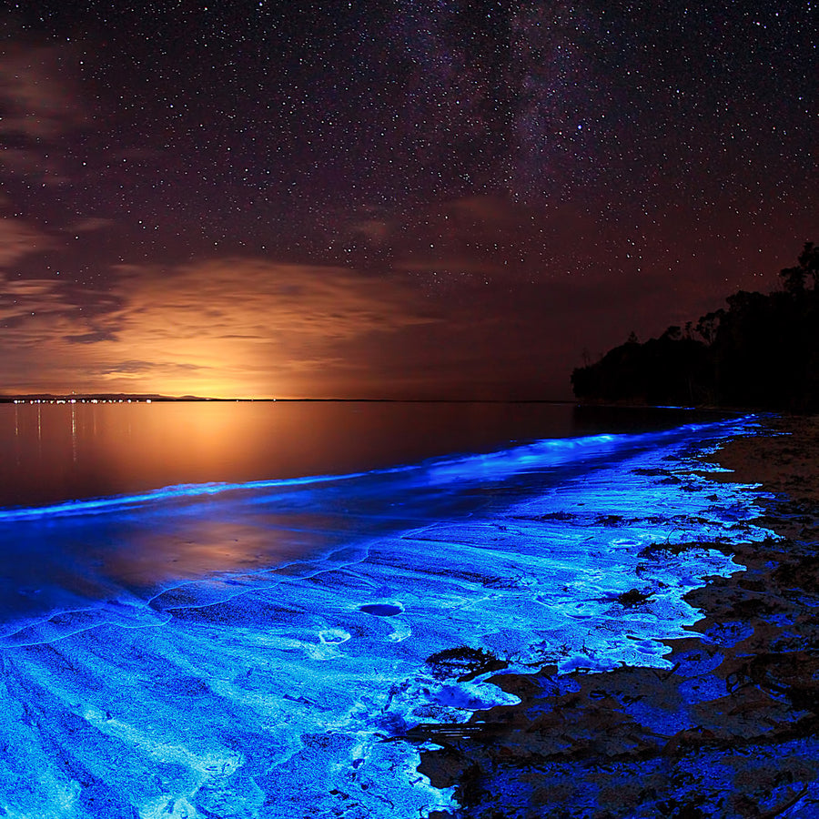 Bioluminescence in Nature. This image was taken in Jervis Bay Australia. It juxtaposes the glow of the ocean with a galaxy of starlight.