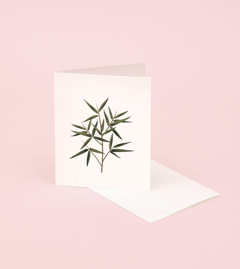 BOTANICAL SCENTED CARD – BAMBOO - SG04 - Clap Clap
