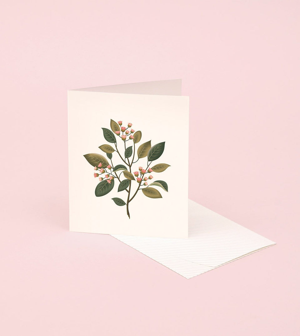 BOTANICAL SCENTED CARD – SANDALWOOD - SG05 - Clap Clap