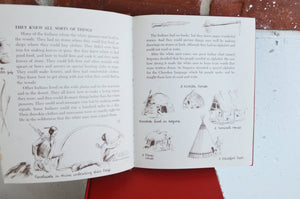1950s Children's First Books/Instructional (Set of 4)