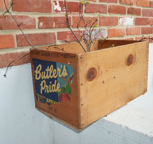 Butler's Pride Washington State Red Delicious Apples Wood Pine Box