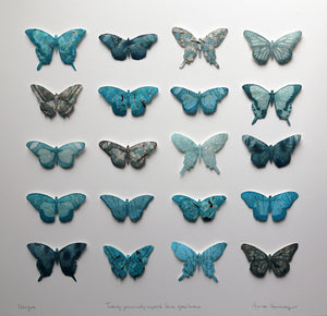 Twenty genuinely superb blue specimens - Variation III