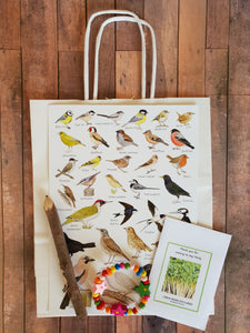 Nature Plastic Free Eco Party Bag with Bird Identification Guide and Wooden Bracelet