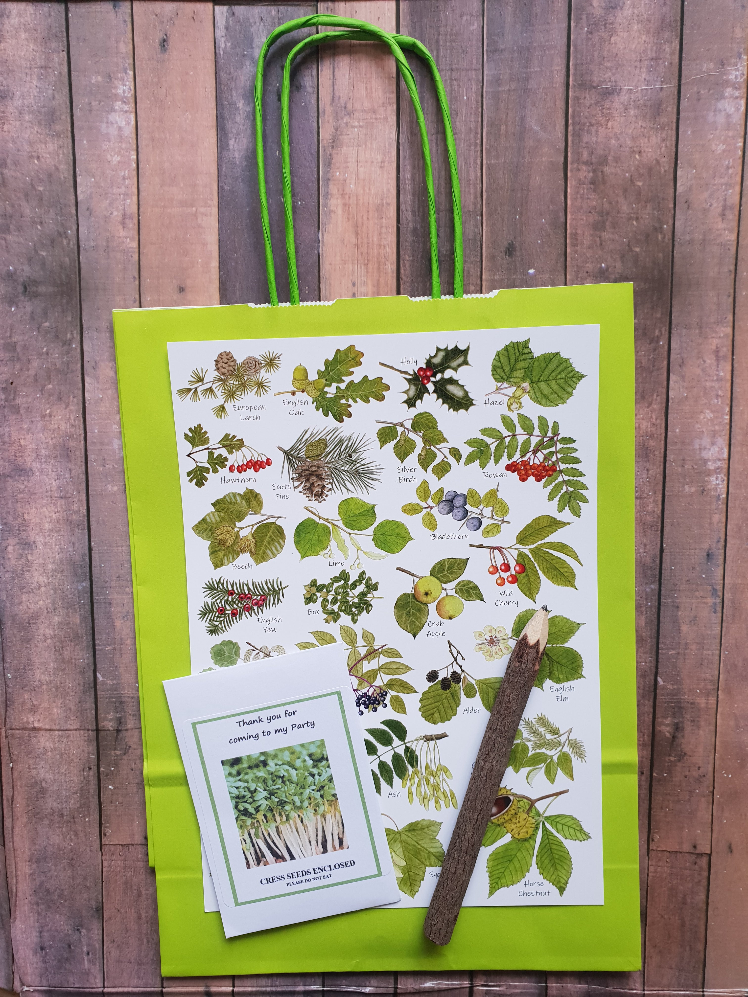 Tree Woodland Plastic Free Party Bag