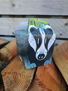 Party Food Box - Badger