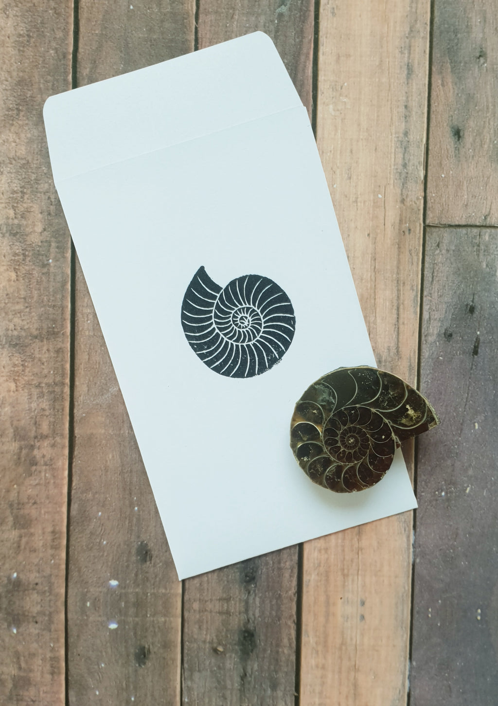 Ammonite Fossil Party Bag Filler