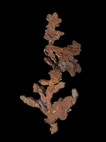 Copper (native); Itauz Mine, Kazakhstan - Alexandria Mineral Shop