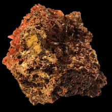 Load image into Gallery viewer, Crocoite; Adelaide Mine, Australia - Alexandria Mineral Shop