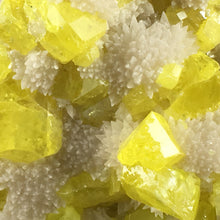 Load image into Gallery viewer, Sulphur on aragonite; Cozzo Disi Mine, Italy - Alexandria Mineral Shop