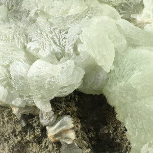 Prehnite; Oficarsa Quarry, Spain - Alexandria Mineral Shop