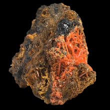 Load image into Gallery viewer, ~Crocoite; Adelaide Mine, Australia - Alexandria Mineral Shop