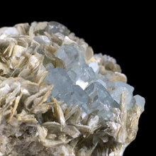 Load image into Gallery viewer, Beryl var. aquamarine on muscovite; Skardu, Pakistan - Alexandria Mineral Shop