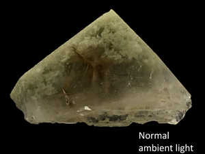Quartz with chlorite and rutile inclusions; Pakistan - Alexandria Mineral Shop