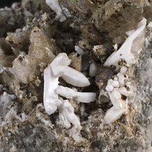 Load image into Gallery viewer, Quartz and calcite; Osilo, Italy - Alexandria Mineral Shop