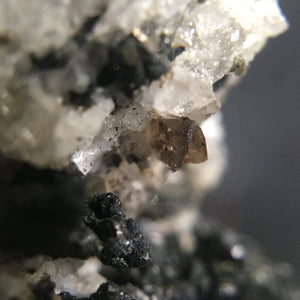 Titanite; Wannigletscher, Switzerland - Alexandria Mineral Shop