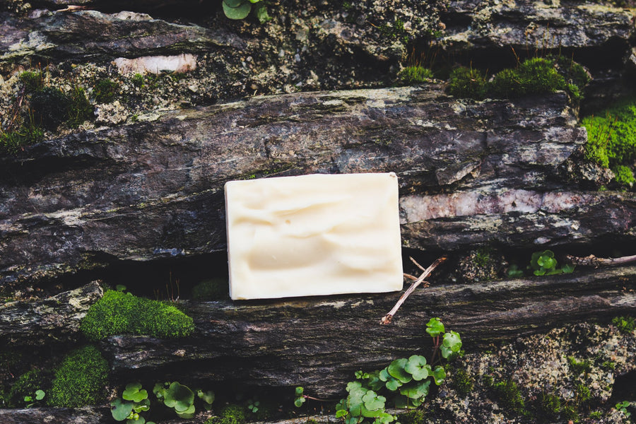 Beard Shampoo Bar: Cedarwood, Pine and Rosemary
