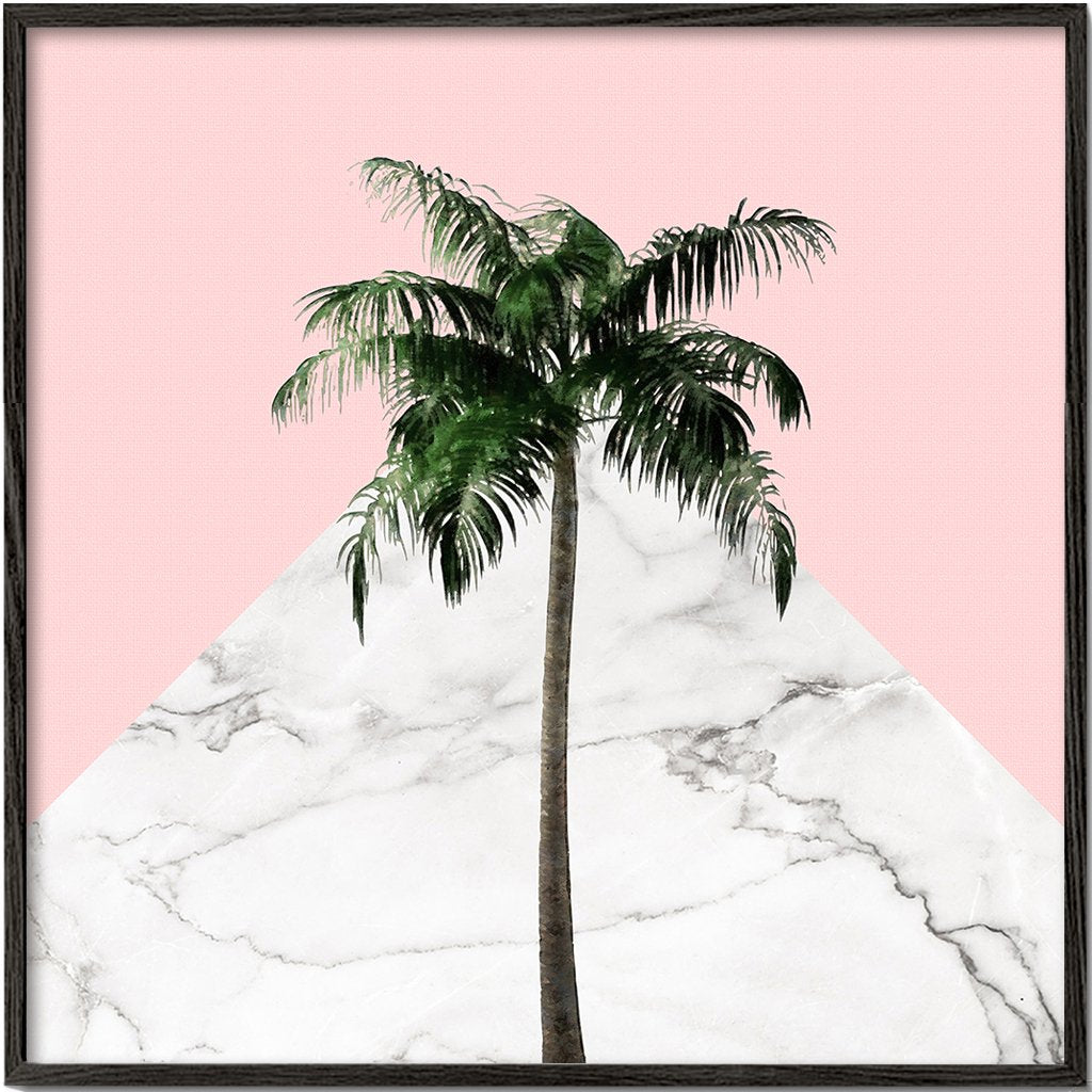 Palm tree on pink and marble wall